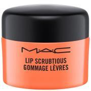 Exfoliante Lip Scrubtious de MAC (Varios sabores) - Candied Nectar